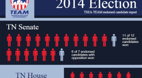 How did TEAM's endorsed candidates do this election cycle?