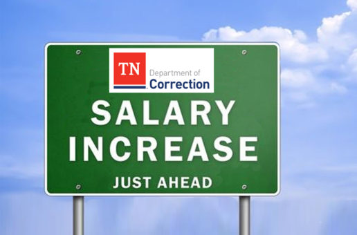 More details about the TDOC Salary Plan