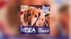 TSEA PET CONTEST WINNERS