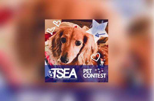 TSEA PET CONTEST WINNERS